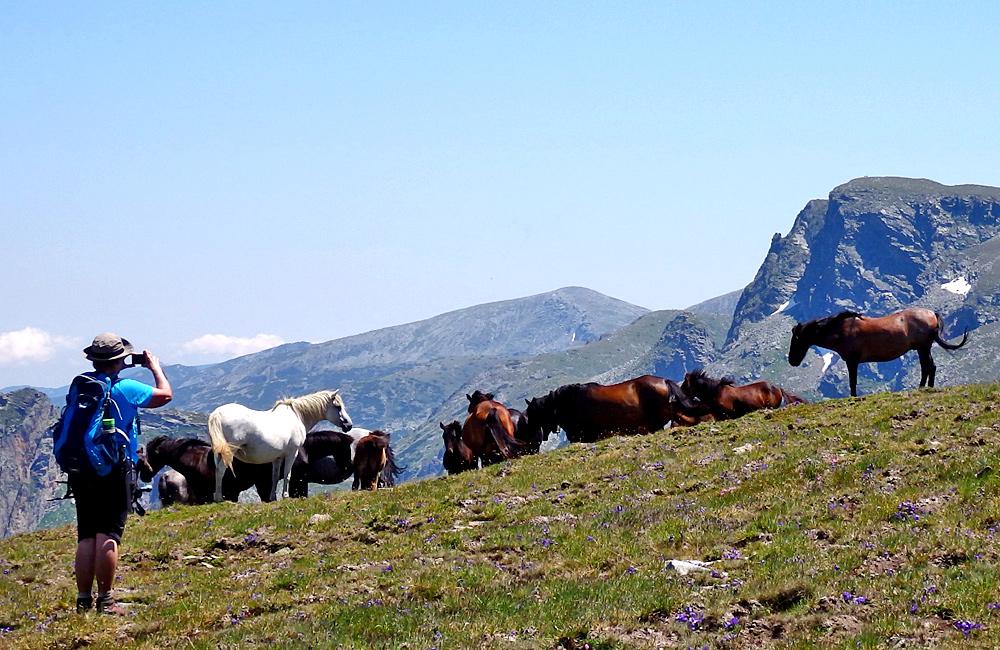 hiking and trekking trips in rila mountains, bulgaria (climbing mt. malyovitsa)