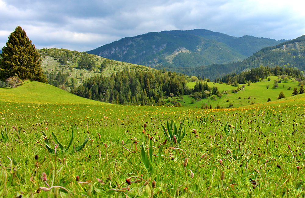 self-guided walking and trekking tours in the rhodopes, bulgaria