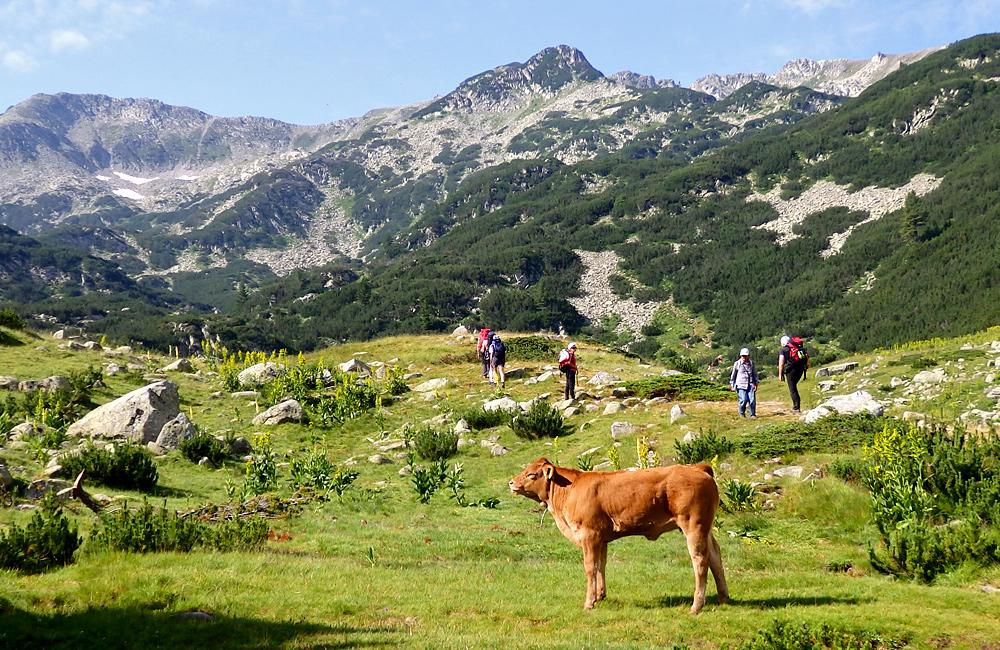 trekking and hiking vacations in bulgaria, pirin mountains