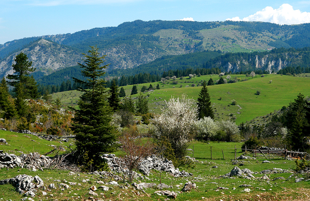 hiking and walking tours in the rhodopes, bulgaria