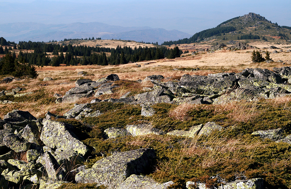 vitosha mountains self-guided walking and hiking tours, bulgaria