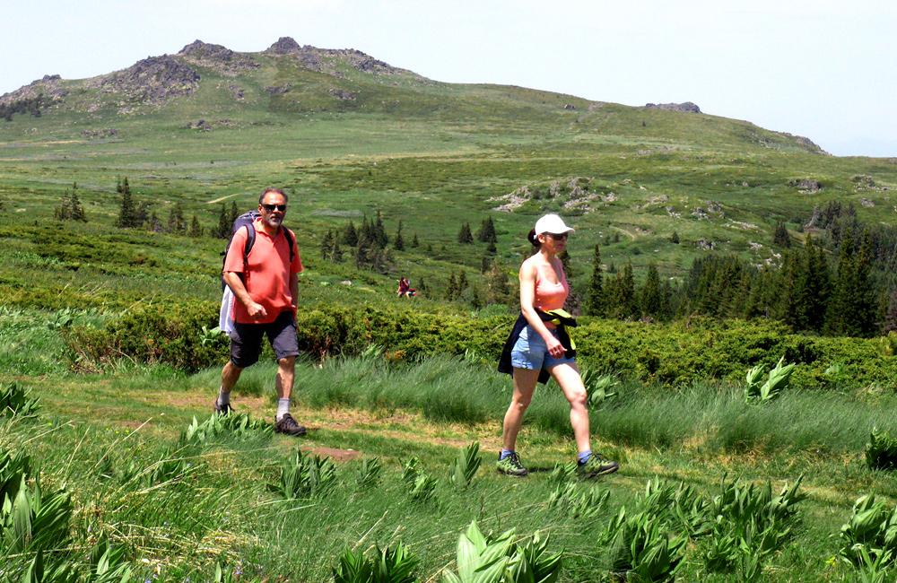 independent and esorted hiking tours to vitosha mountains, bulgaria