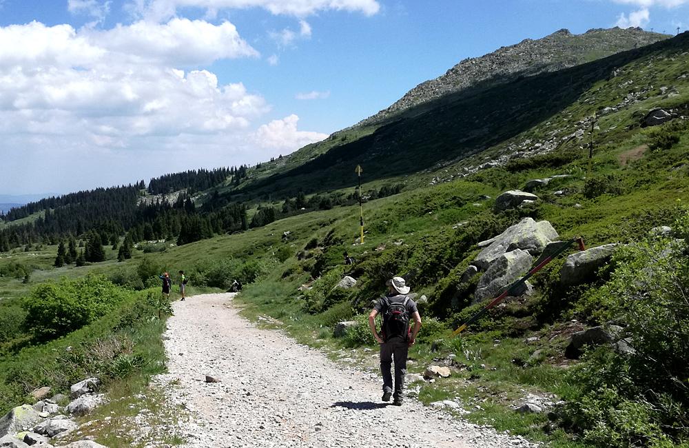 vitosha mountains hiking tour