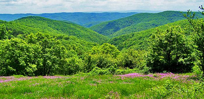 strandzha mountains hiking tours, bulgaria