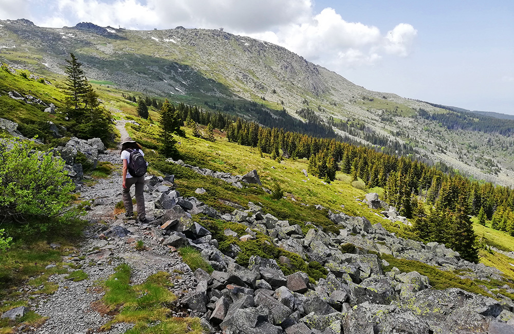 vitosha walking and hiking trips