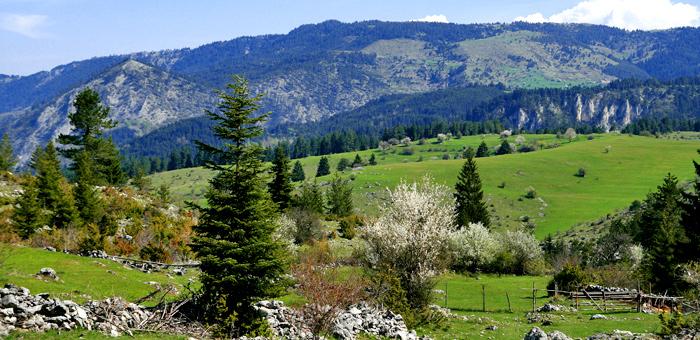 circuits de randonnée et de trekking à rhodope, bulgarie