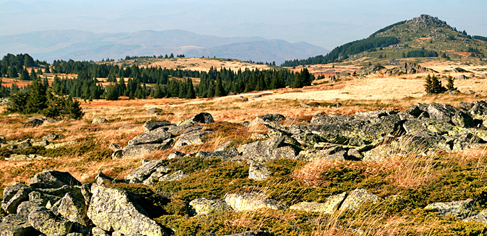wander- und trekkingtouren in den vitosha bergen, bulgarien